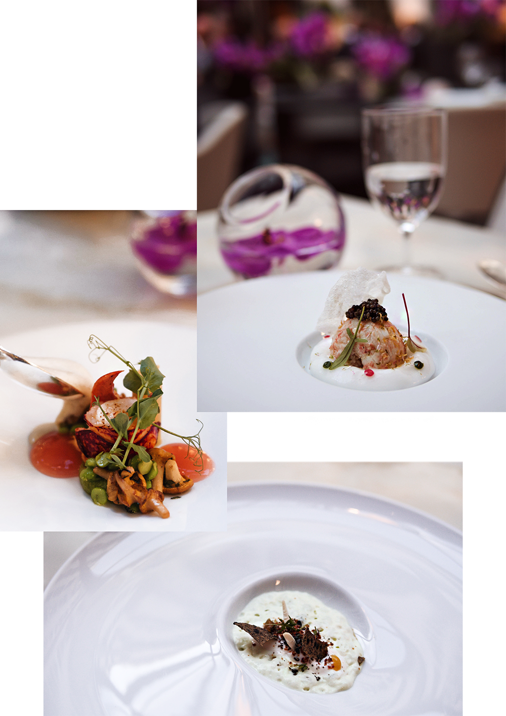luxury-hotel-four-seasons-paris-lorangerie-restaurant-food